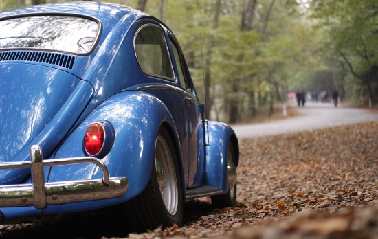 negative-space-blue-volkswagen-beetle-forest-burak-kebapci.jpg